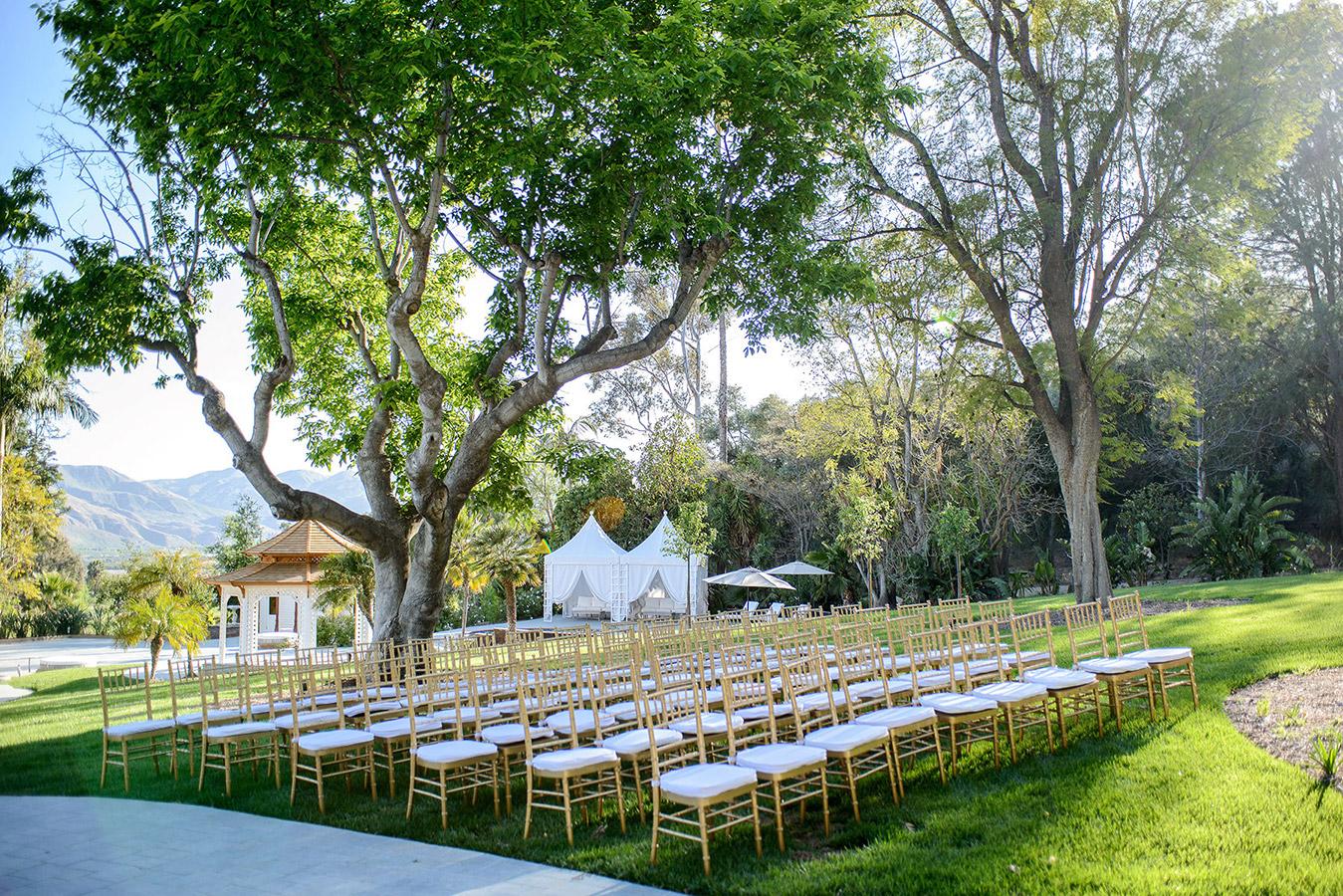NM Wedding Scroll3